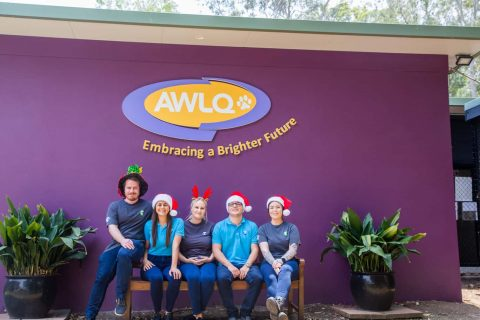 End of Year Campaign with Animal Welfare League Queensland (AWLQ)